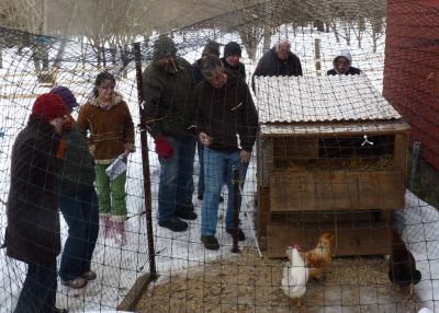 Backyard_Chicken_Workshop_2011_02_12_0008_-_red_cottage_coop