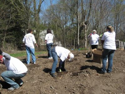 dunkin_brands_plug_planting_april_2009