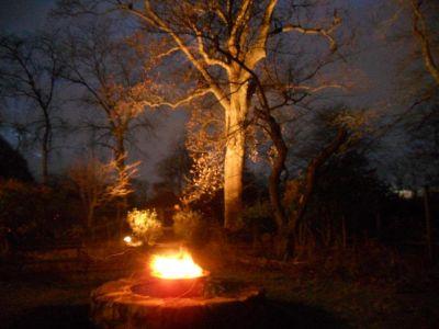 winterfire4
